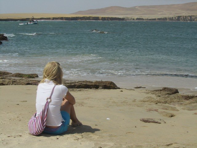 Life in Lima and a trip to the Sur Chico - Paracas