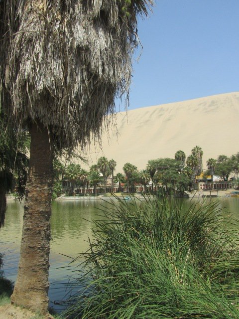 Life in Lima and a trip to the Sur Chico - Huacachina