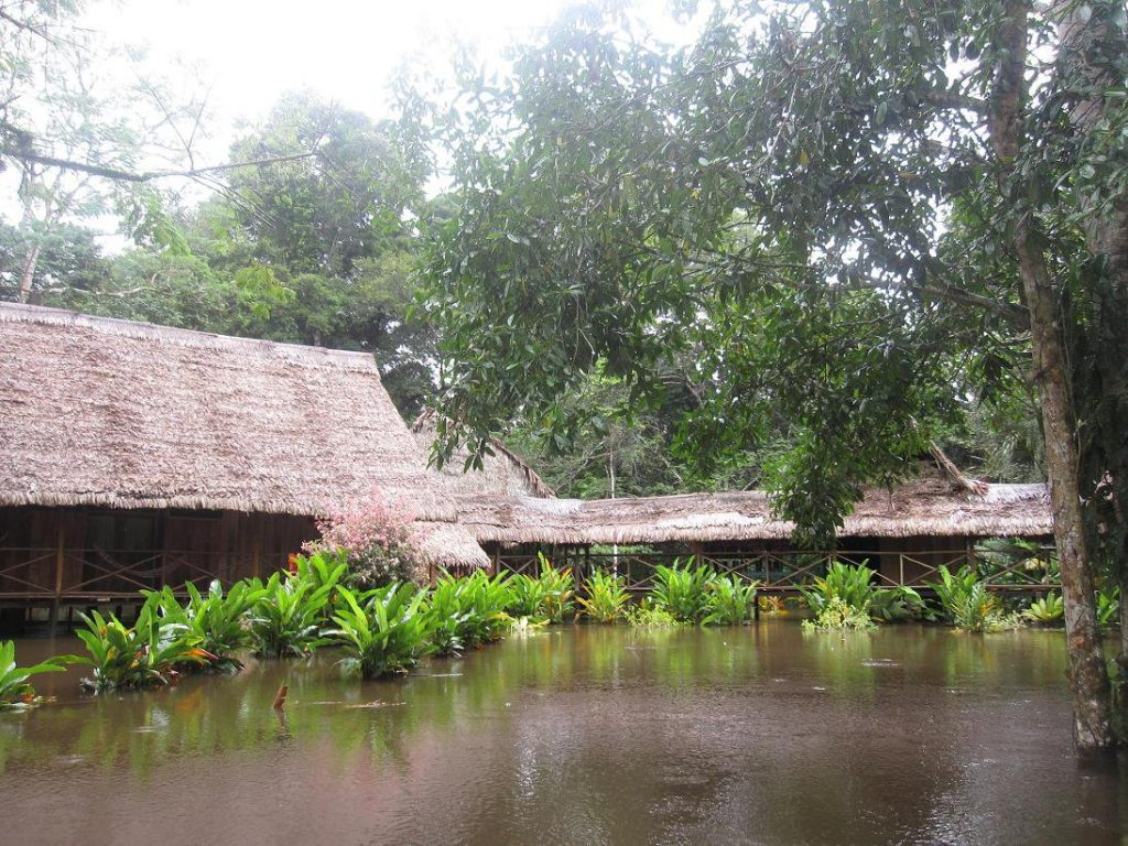 Trip to Iquitos - The Lodge