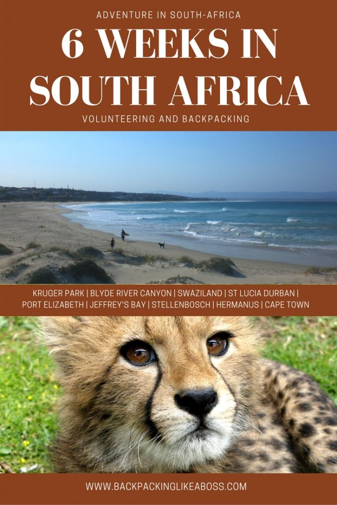 Volunteering and Backpacking in South-Africa was an amazing experience! Read my blog here