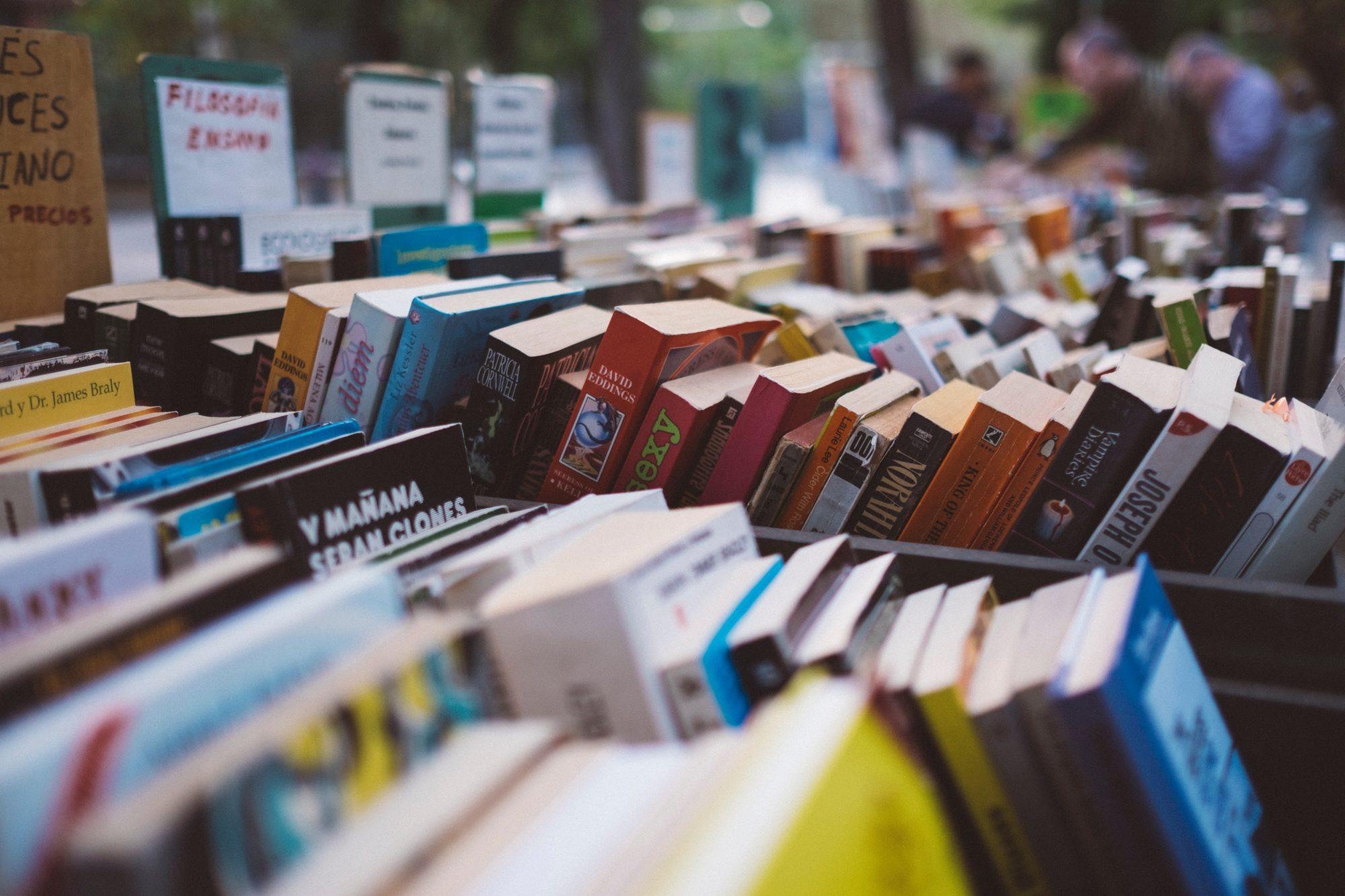 Mandatory Books for Digital Nomads – Start Reading :-)