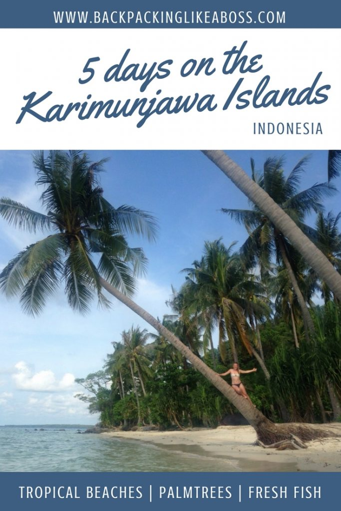 The amazing Karimunjawa Islands near Java, Indonesia. Visit them if you can, it's great!