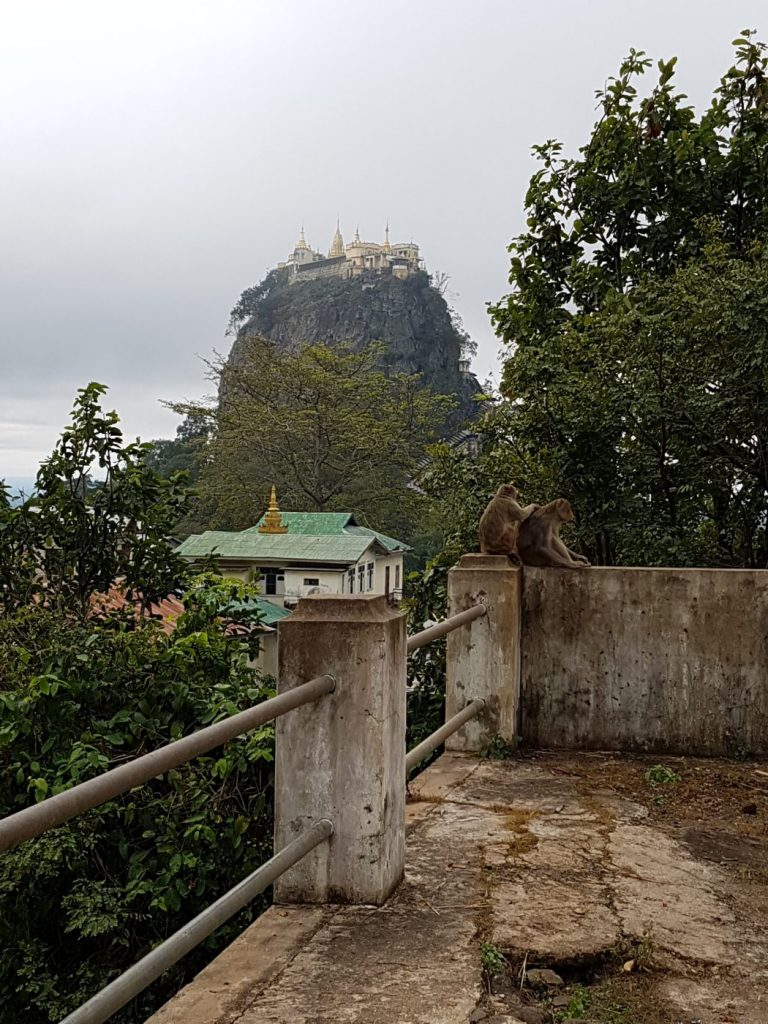 3 Weeks in Myanmar - Mt Popa